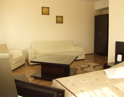 Cazare Hotel Roata - Cavnic, Maramureş